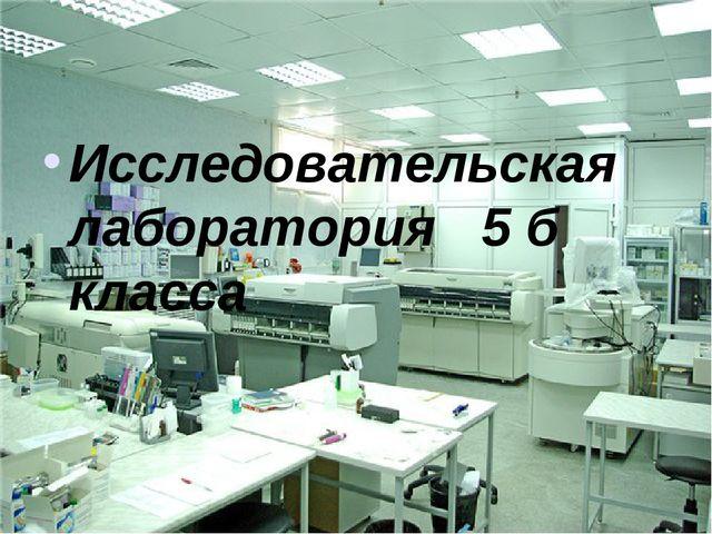 Исследовательская лаборатория 5 б класса
