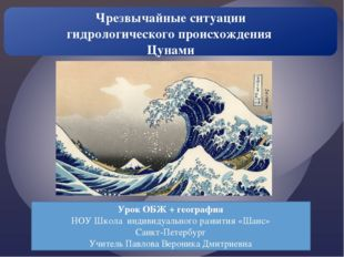 Урок ОБЖ + география НОУ Школа индивидуального развития «Шанс» Санкт-Петербур