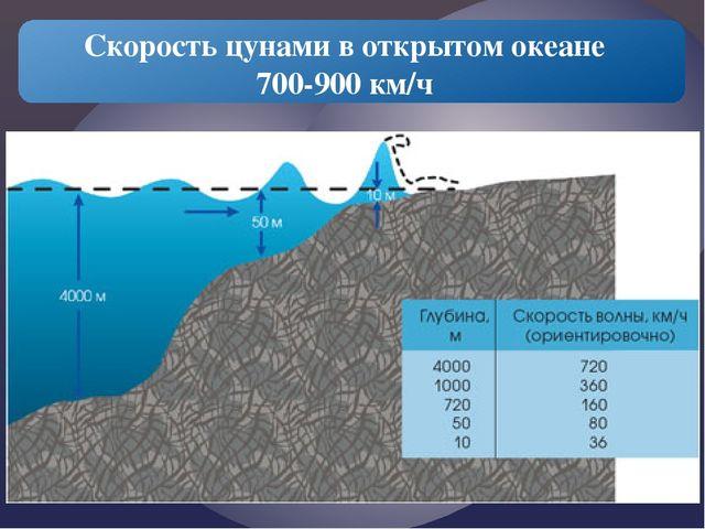 Скорость цунами в открытом океане 700-900 км/ч