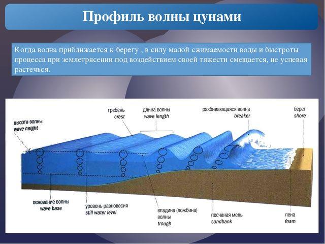 Профиль волны цунами Когда волна приближается к берегу , в силу малой сжимае...