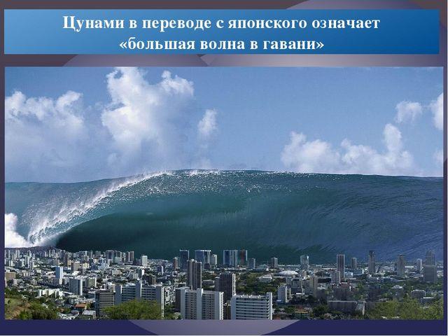 Цунами в переводе с японского означает «большая волна в гавани»