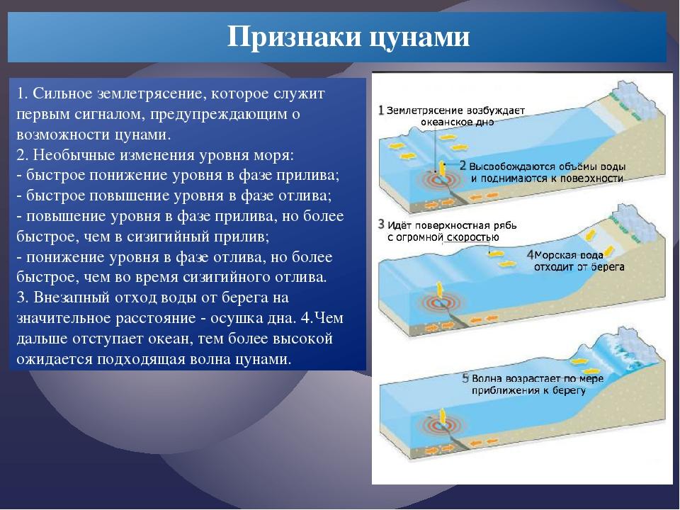 1. Сильное землетрясение, которое служит первым сигналом, предупреждающим о...