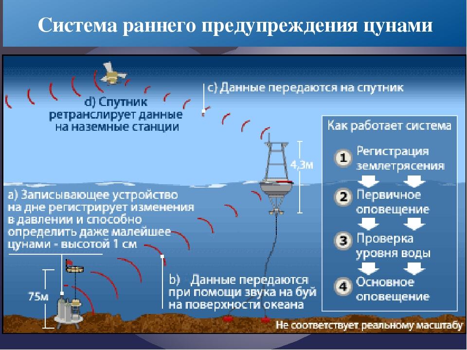 Система раннего предупреждения цунами