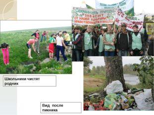 Школьники чистят родник Вид после пикника