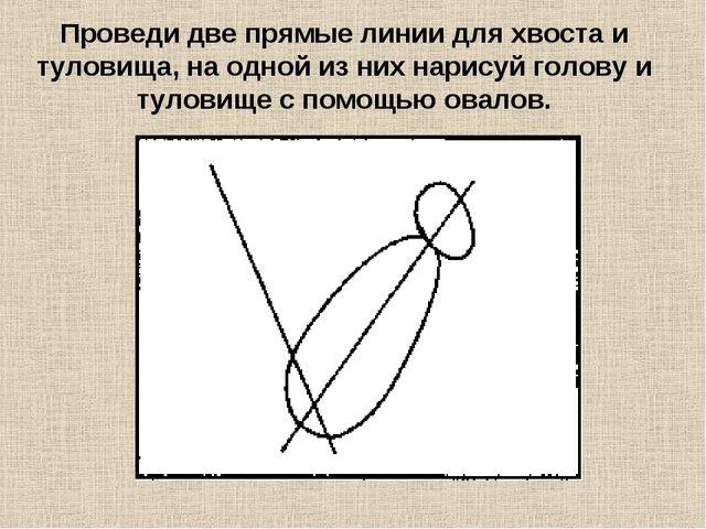 Проведи две прямые линии для хвоста и туловища, на одной из них нарисуй голов...