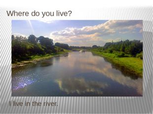 Where do you live? I live in the river.
