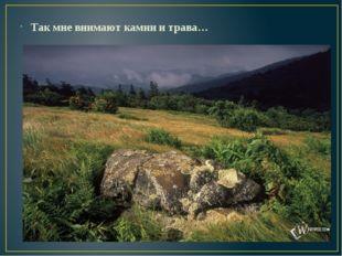 Так мне внимают камни и трава…