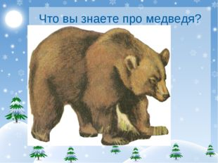 Что вы знаете про медведя?