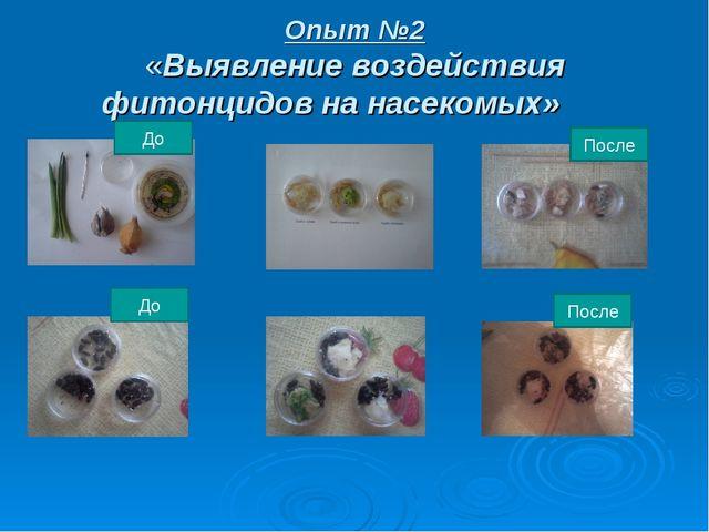 Опыт №2 «Выявление воздействия фитонцидов на насекомых» До После До После