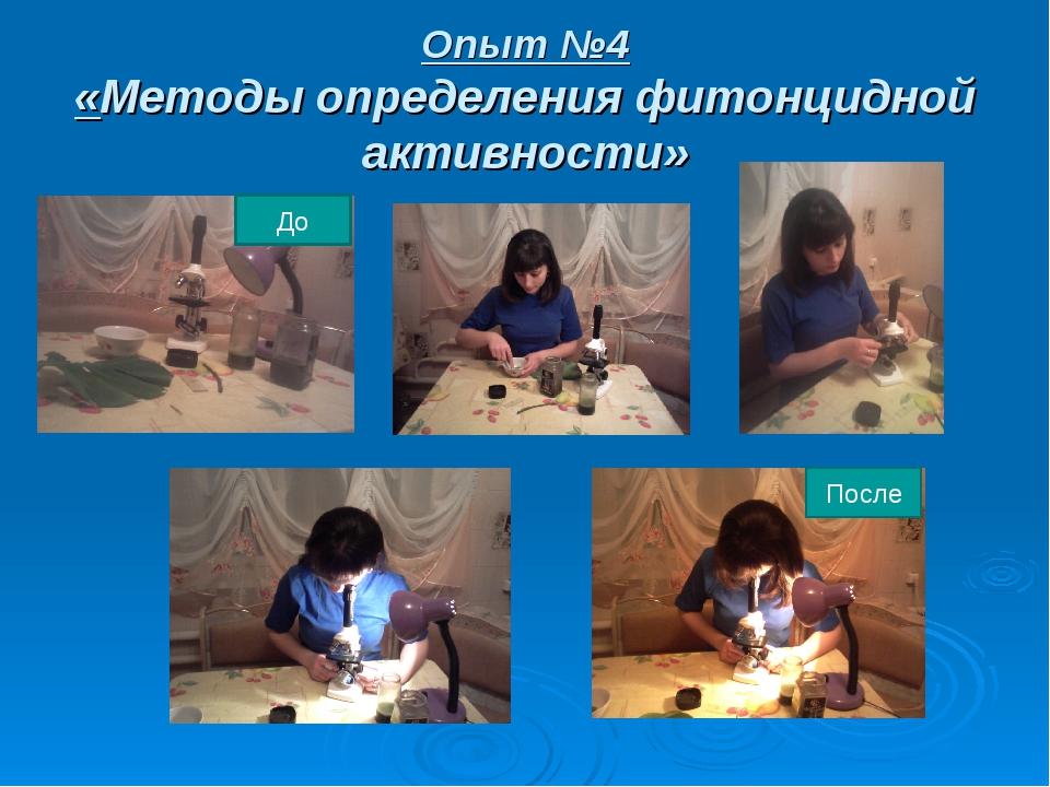 Опыт №4 «Методы определения фитонцидной активности» До После