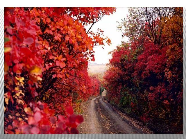 Г Скребицкий Осень Скачать