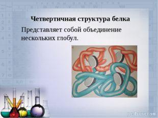 Четвертичная структура белка Представляет собой объединение нескольких глобул.