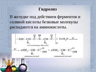 Гидролиз В желудке под действием ферментов и соляной кислоты белковые молекул