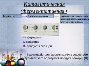 Каталитическая (ферментативная) Ф- ферменты С-вещество П- продукты реакции Вз