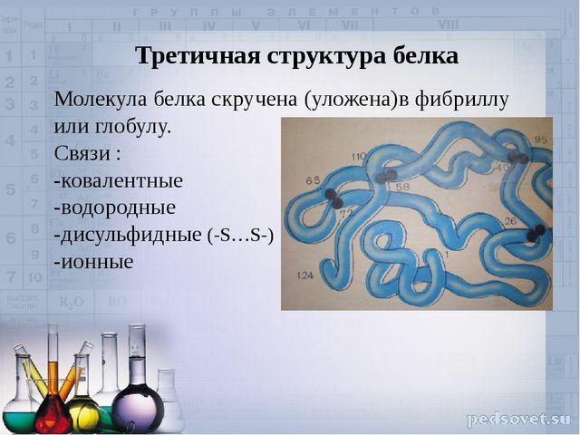 Третичная структура белка Молекула белка скручена (уложена)в фибриллу или гло...