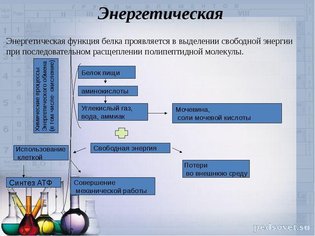 Энергетическая Энергетическая функция белка проявляется в выделении свободной...