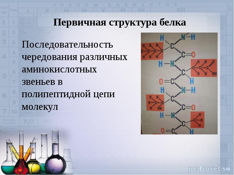 Первичная структура белка Последовательность чередования различных аминокисло...
