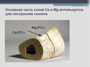 Основная часть солей Ca и Mg используется для построения скелета