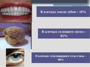 В клетках эмали зубов – 10% В клетках головного мозга – 85% В клетках стеклов
