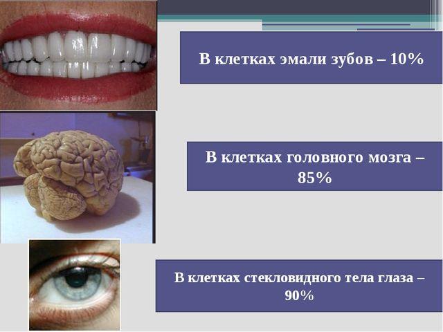 В клетках эмали зубов – 10% В клетках головного мозга – 85% В клетках стеклов...