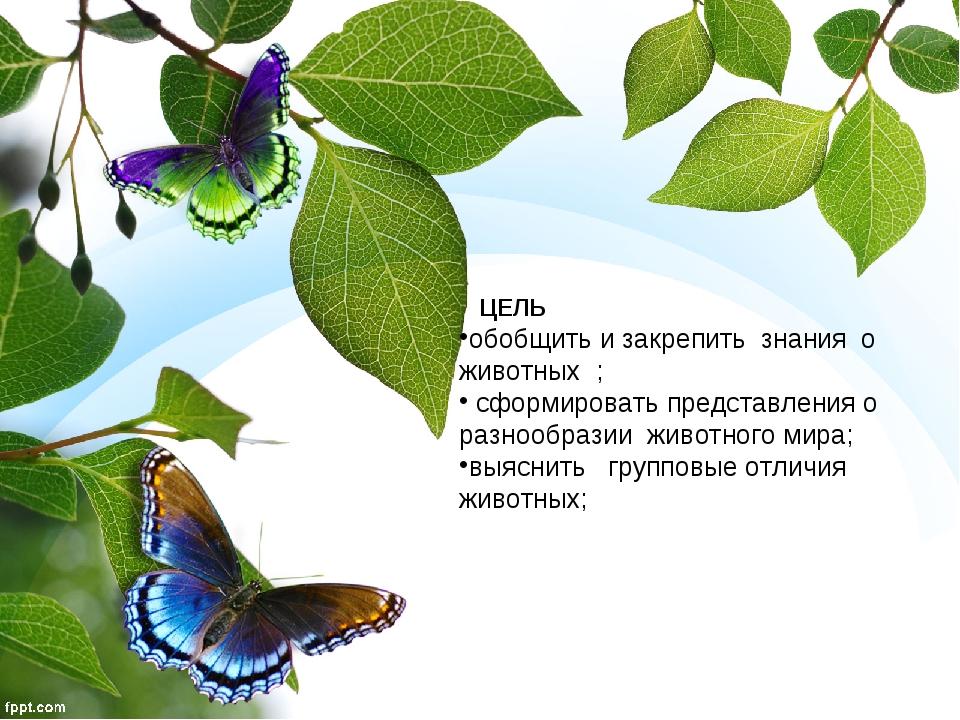 ЦЕЛЬ обобщить и закрепить знания о животных ; сформировать представления о р...