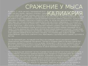 СРАЖЕНИЕ У МЫСА КАЛИАКРИЯ В районе 17 часов уже весь Черноморский флот, сблиз