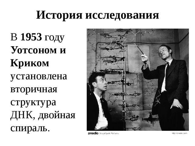 История исследования В 1953 году Уотсоном и Криком установлена вторичная стру...