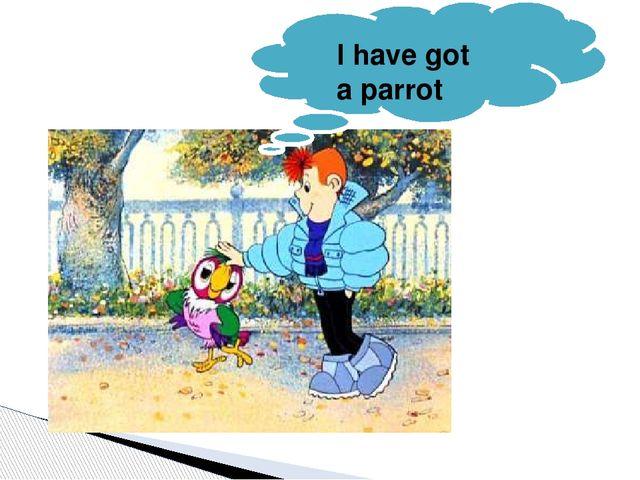 I have got a parrot