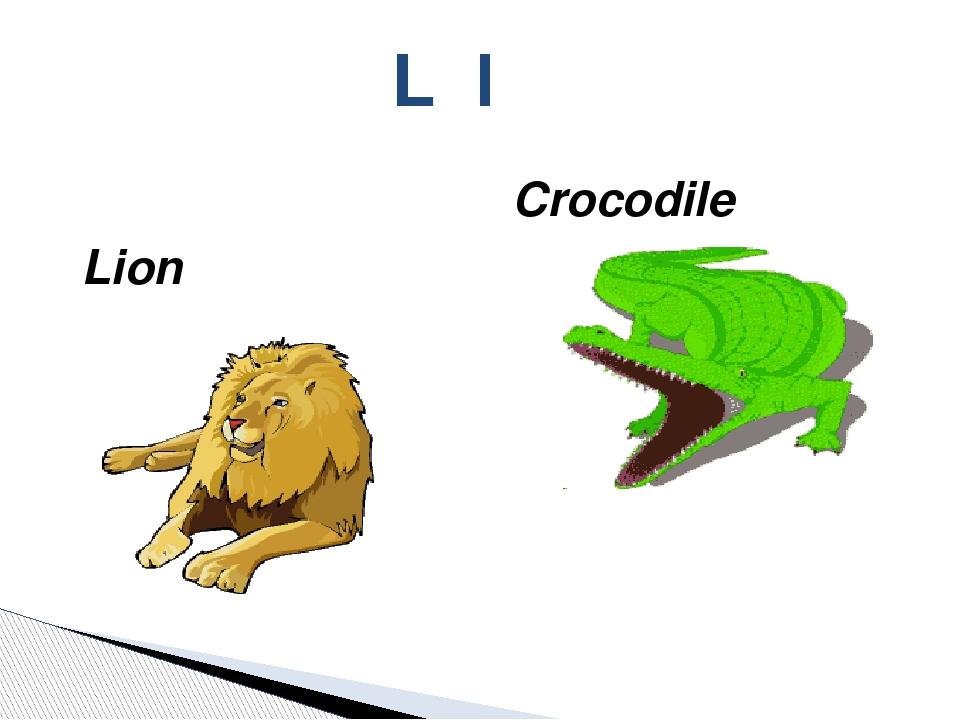 Lion L l Crocodile