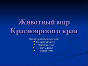 Животный мир Красноярского края Над презентацией работали: Глухенькая Света Ч