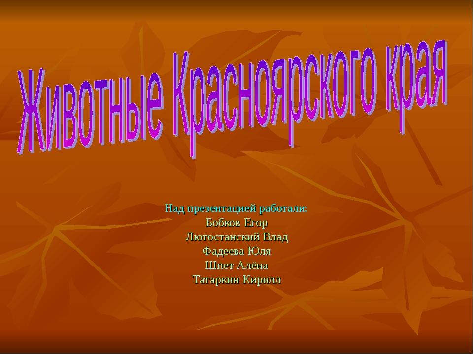 Над презентацией работали: Бобков Егор Лютостанский Влад Фадеева Юля Шпет Алё...