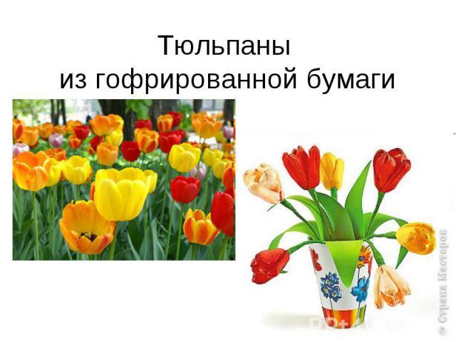hello_html_m455d71bb.jpg