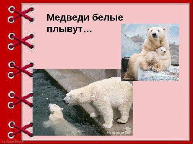 Медведи белые плывут…