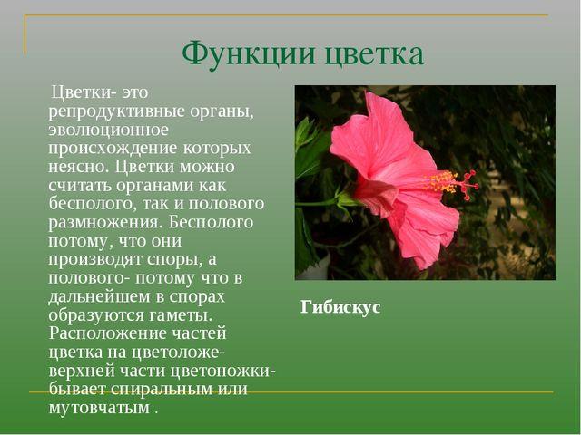 Функции цветка Цветки- это репродуктивные органы, эволюционное происхождение...
