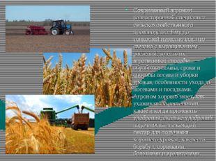 Современный агроном разносторонний специалист сельскохозяйственного производс