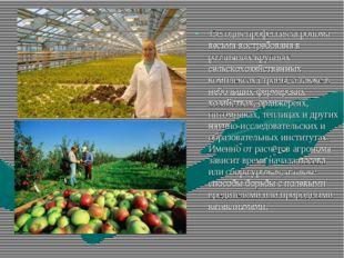 Сегодня профессия агронома весьма востребована в различных крупных сельскохо