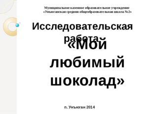 Выполнили: учащиеся 2 класса Руководитель проекта: Путова Г.П. . Муниципальн