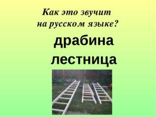 драбина лестница Как это звучит на русском языке?