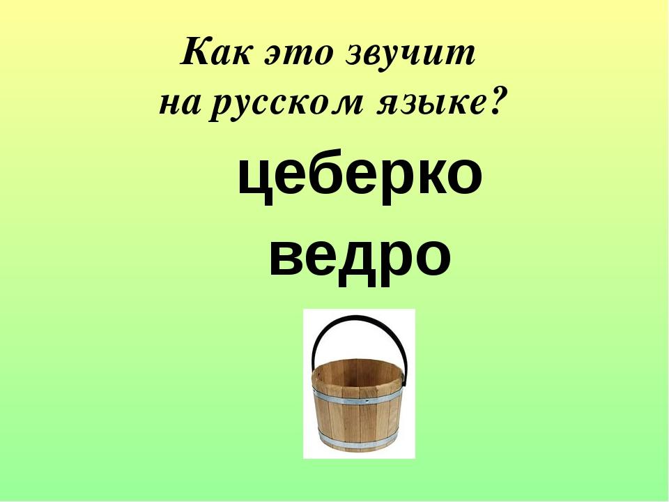цеберко ведро Как это звучит на русском языке?