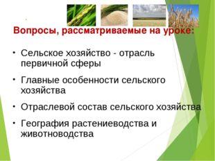 Вопросы, рассматриваемые на уроке: Сельское хозяйство - отрасль первичной сфе