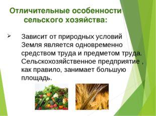 Отличительные особенности сельского хозяйства: Зависит от природных условий З