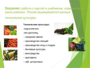 Задание: работа с картой и учебником, определите в каких районах России выращ