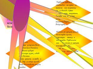 Монтессори педагогтың іс-әрекетінің үш жүйелі кезеңдерін белгіледі: Тәрбиеші