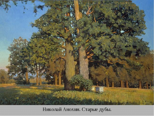 Николай Анохин. Старые дубы.
