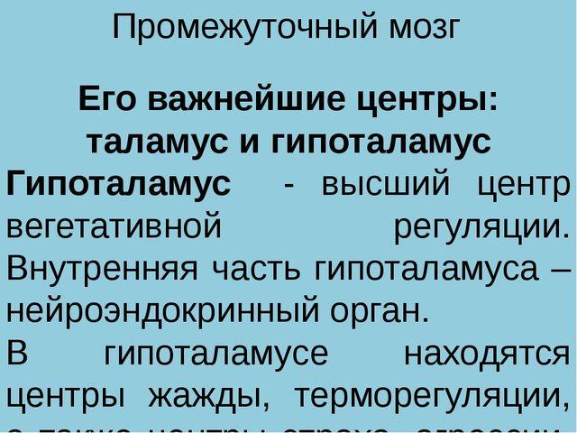 Промежуточный мозг Его важнейшие центры: таламус и гипоталамус Гипоталамус -...
