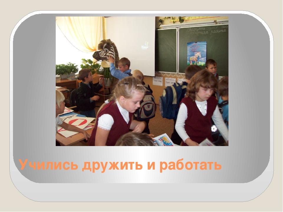 Учились дружить и работать