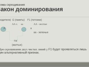 Схема скрещивания Закон доминирования P(родители) G (гаметы) F1 (потомки) P