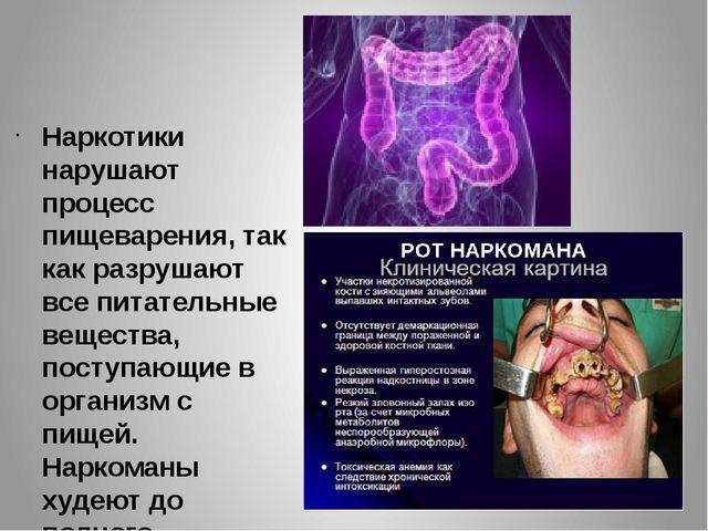 Наркотики нарушают процесс пищеварения, так как разрушают все питательные вещ...