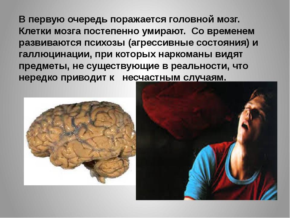 В первую очередь поражается головной мозг. Клетки мозга постепенно умирают. С...
