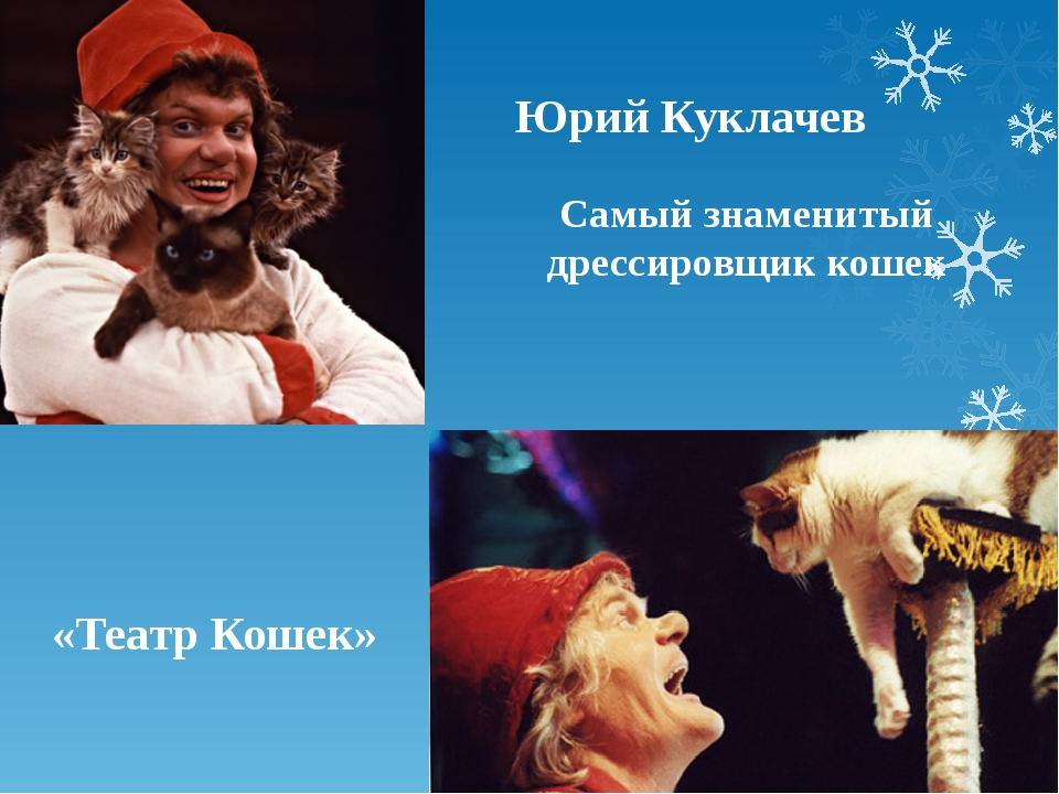 Юрий Куклачев Самый знаменитый дрессировщик кошек «Театр Кошек»